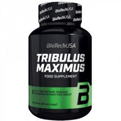 tribulus-maximus-foto